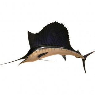 Sailfish sculpture